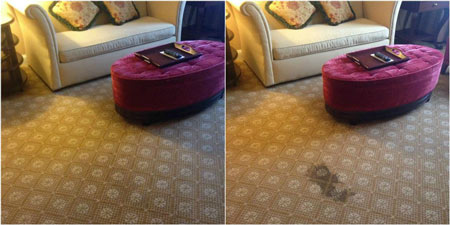 At the 1 or 3-day carpet dyeing and rug restoration course, you will learn how to neutralize bleach, mix dyes to match the color of clients carpet, ...