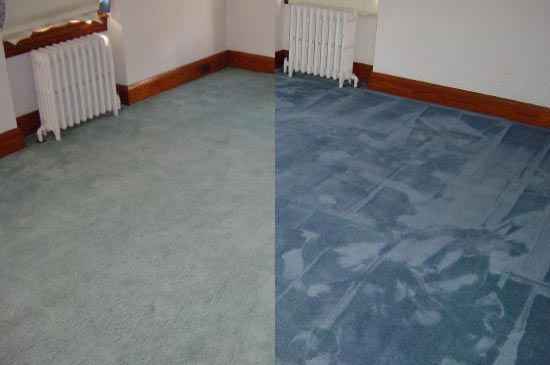 Carpet Dyeing And Rug Restoration Courses By Colorful Carpets